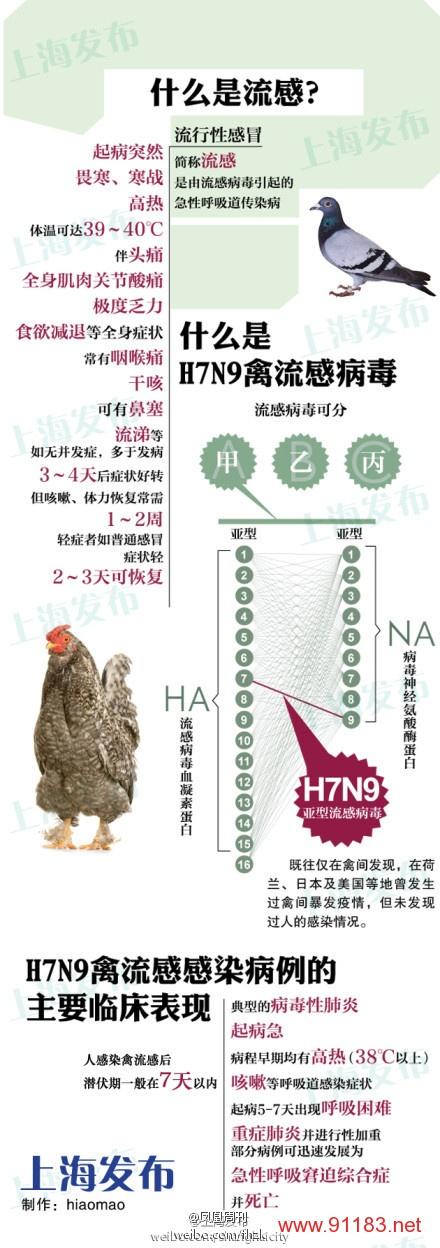 一张图了解H7N9病毒基本情况