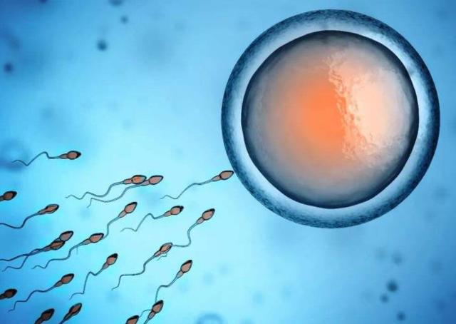 怎样才能安全快速的怀孕?这6点可以供您参考